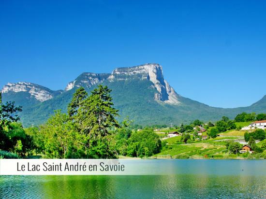 La Tomme de Savoie IGP