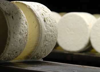 Fabrication des fromages