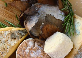 La Provence et ses Fromages d'Excellence
