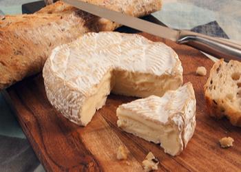 La visite du Musée du Camembert à Vimoutiers