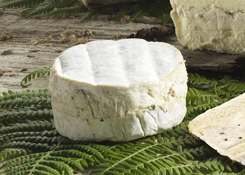 Fromage à la truffe : le Camembert de Normandie